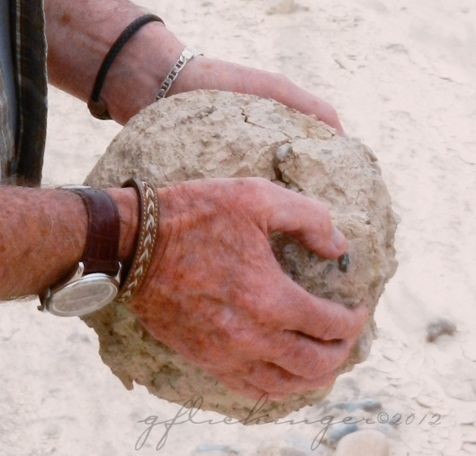 Mudball in hand for scale