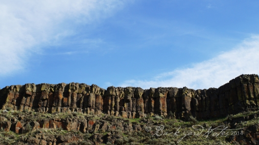 Crab Creek basalt cliffs