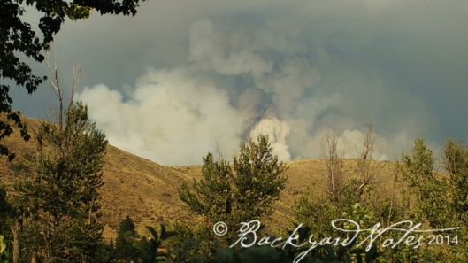 One of many Winthrop area fires seen from the fesival grounds.