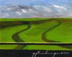 16_Rice Fields